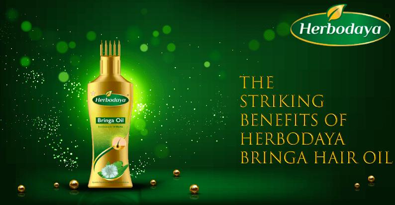 Striking Benefits of Herbodaya Bringa Hair oil