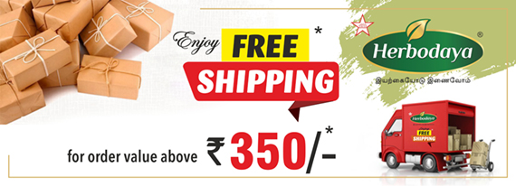 570x206_ free shipping banner