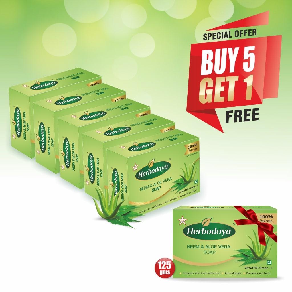 5+1 offer - NEEM SOAP-min